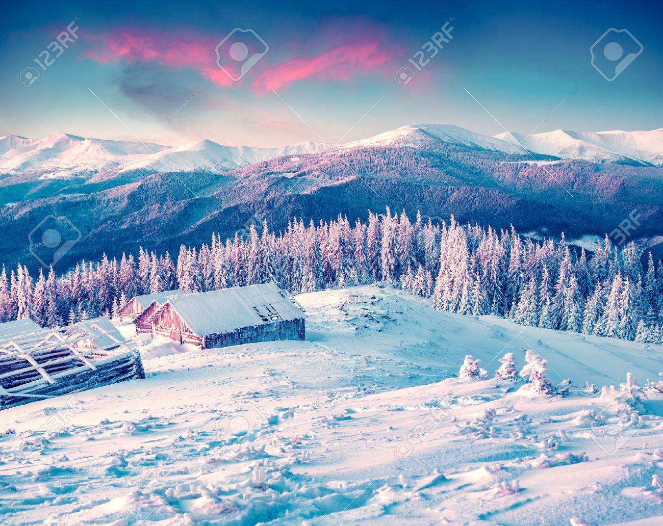 Colorful winter morning in the Carpathian mountains. Glade Pozharska, Carpathian, Ukraine, Europe. - 45895528