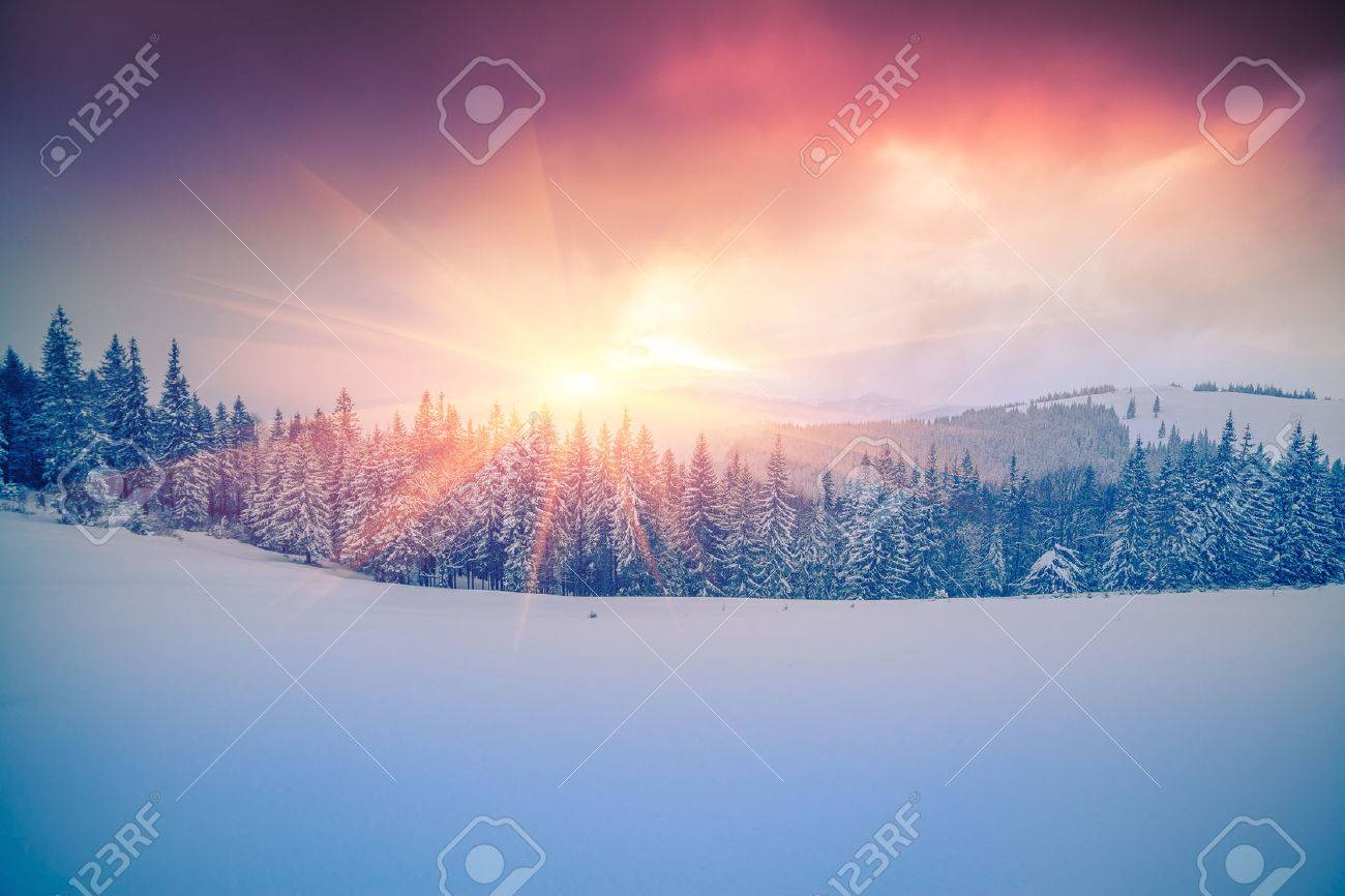 Colorful winter scene in the Carpathian mountains. - 49027733