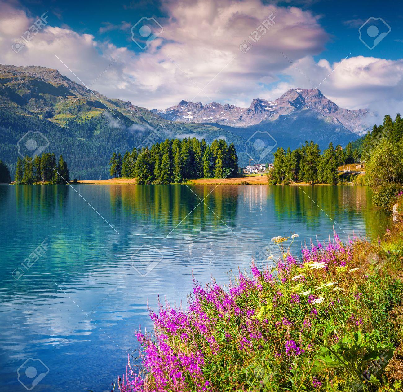 Sunne summer scene on the Champferersee lake. Silvaplana village in the morning mist. Alps, Switzerland, Europe. - 50398035