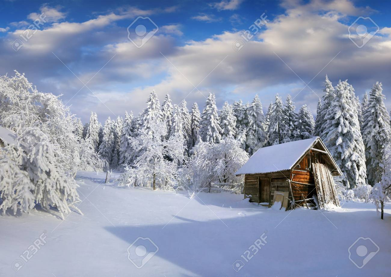 Sunny winter morning in Carpathian village with snow covered trees in garden. Colorful outdoor scene, Happy New Year celebration concept. Artistic style post processed photo. - 89492133
