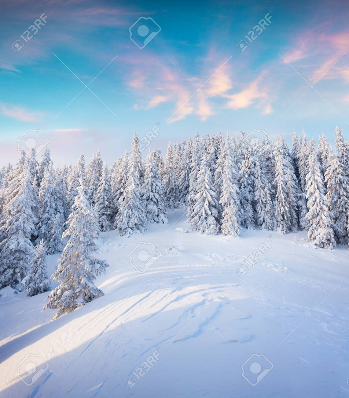 Beautiful winter sunrise in Carpathian mountains. Colorful outdoor scene, Happy New Year celebration concept. Artistic style post processed photo. - 89492834