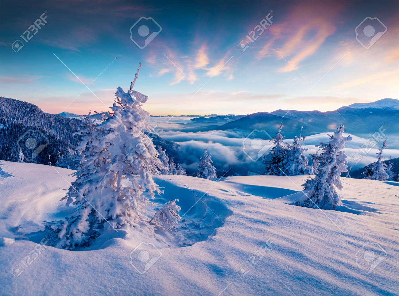 Dramatic winter sunrise in Carpathian mountains with snow covered fir trees. Colorful outdoor scene, Happy New Year celebration concept. Artistic style post processed photo. - 89420026