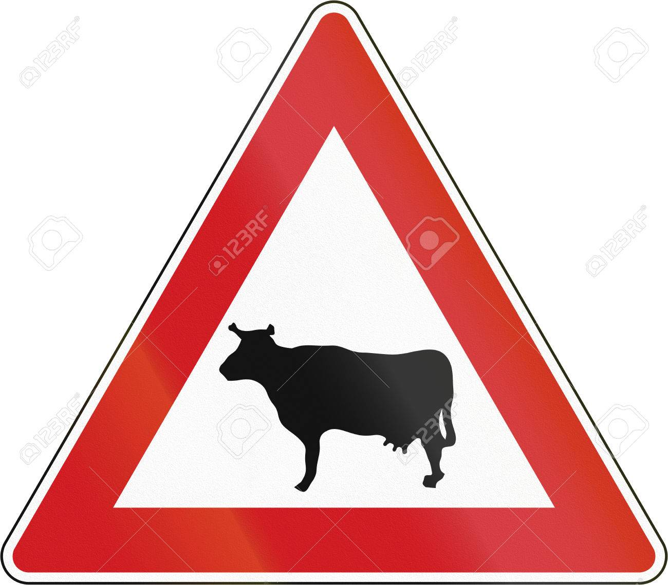 Czech Sign Warning About Cattle Crossing Or Standing On The Road Stock Photo Picture And Royalty Free Image Image 40471407