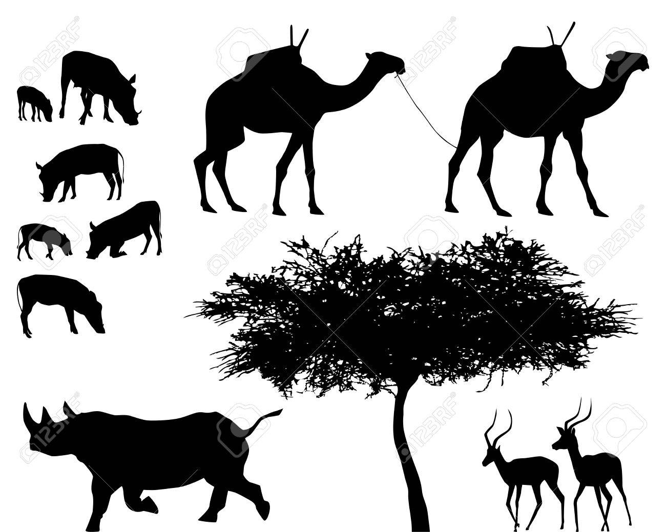 exotic trees and animals, vector set Stock Vector - 4692075