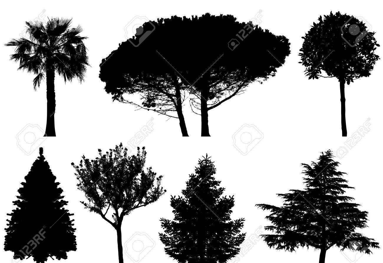 trees set Stock Vector - 6931544