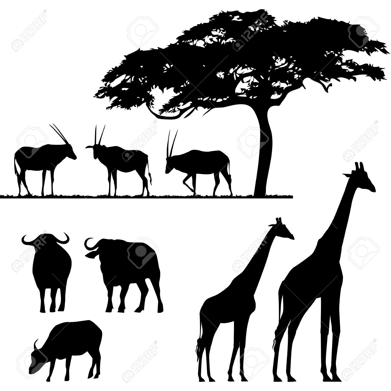 African Animals Vector Silhouettes Royalty Free Cliparts Vectors And Stock Illustration Image 9707213