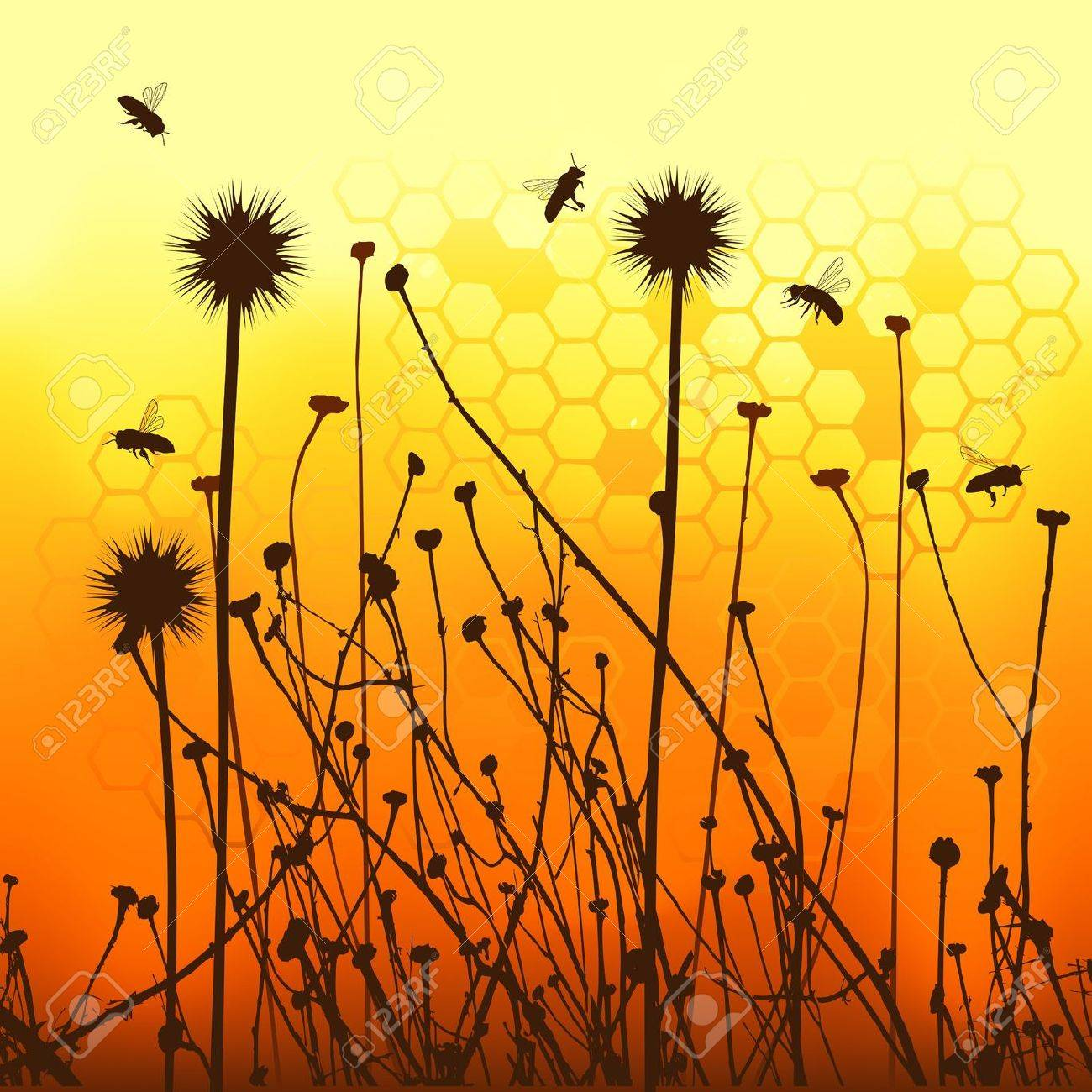 vector grass silhouettes backgrounds and bees Stock Vector - 12804958