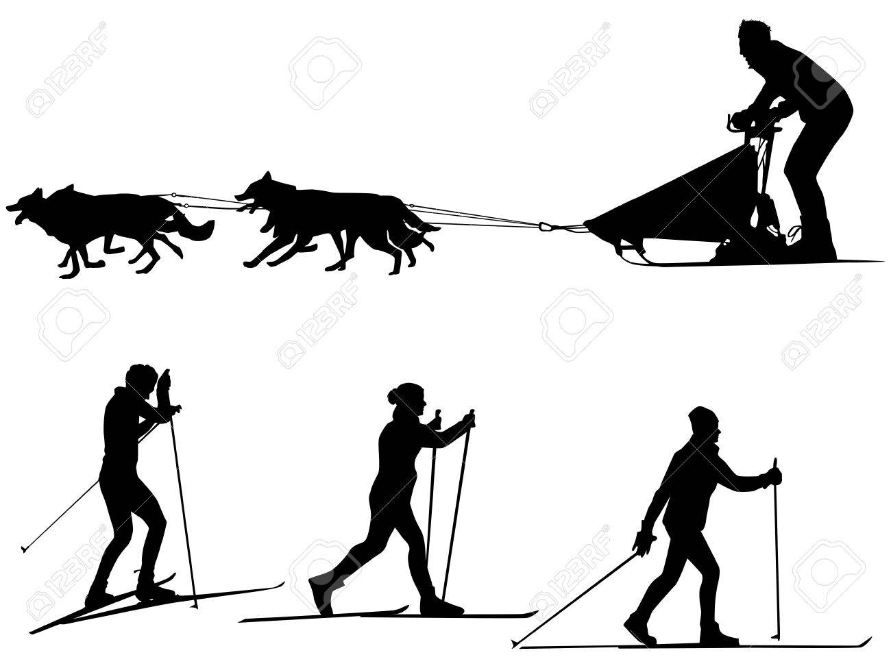 Cross Country Skiing And Dog Sledding Sport Silhouette Team Of Dogs Stockfoto