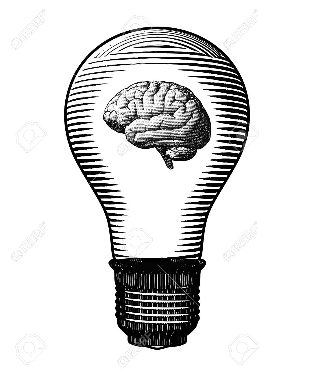 Brain Inside The Light Bulb Black And White Engraving Drawing