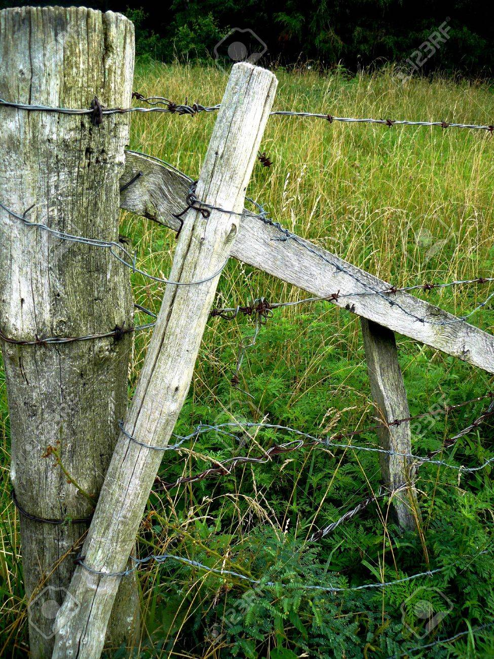 wood farm fence. A Weathered Gray-wood Farm Fence Wrapped With Barbed Wire Stock Photo - 3367198 Wood