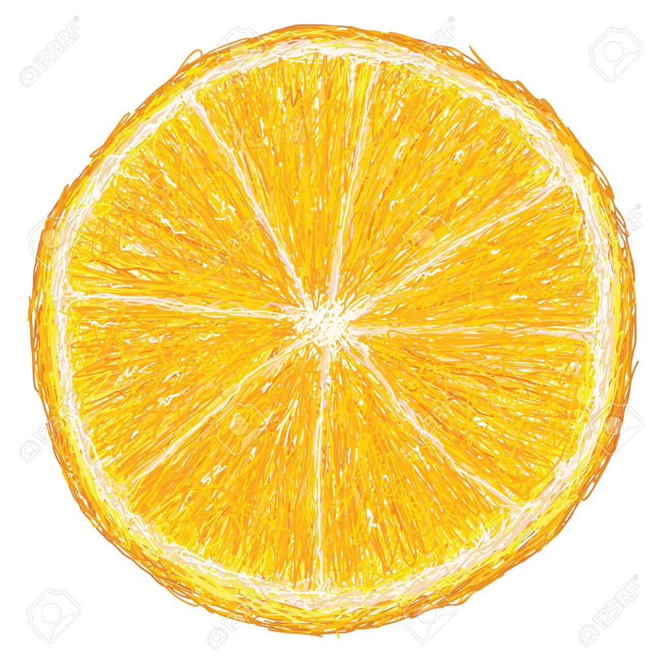 オレンジ色の果物のユニークなスタイルの図断面図白い背景で隔離の