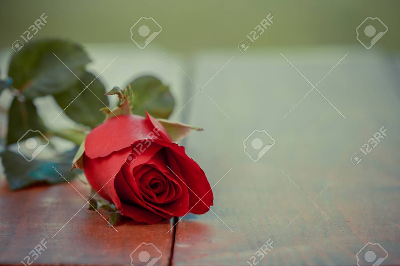 Vintage beautiful red rose flower on wooden table and home garden stock photo vintage beautiful red rose flower on wooden table and home garden background romantic table setting valentine day celebration love concept izmirmasajfo