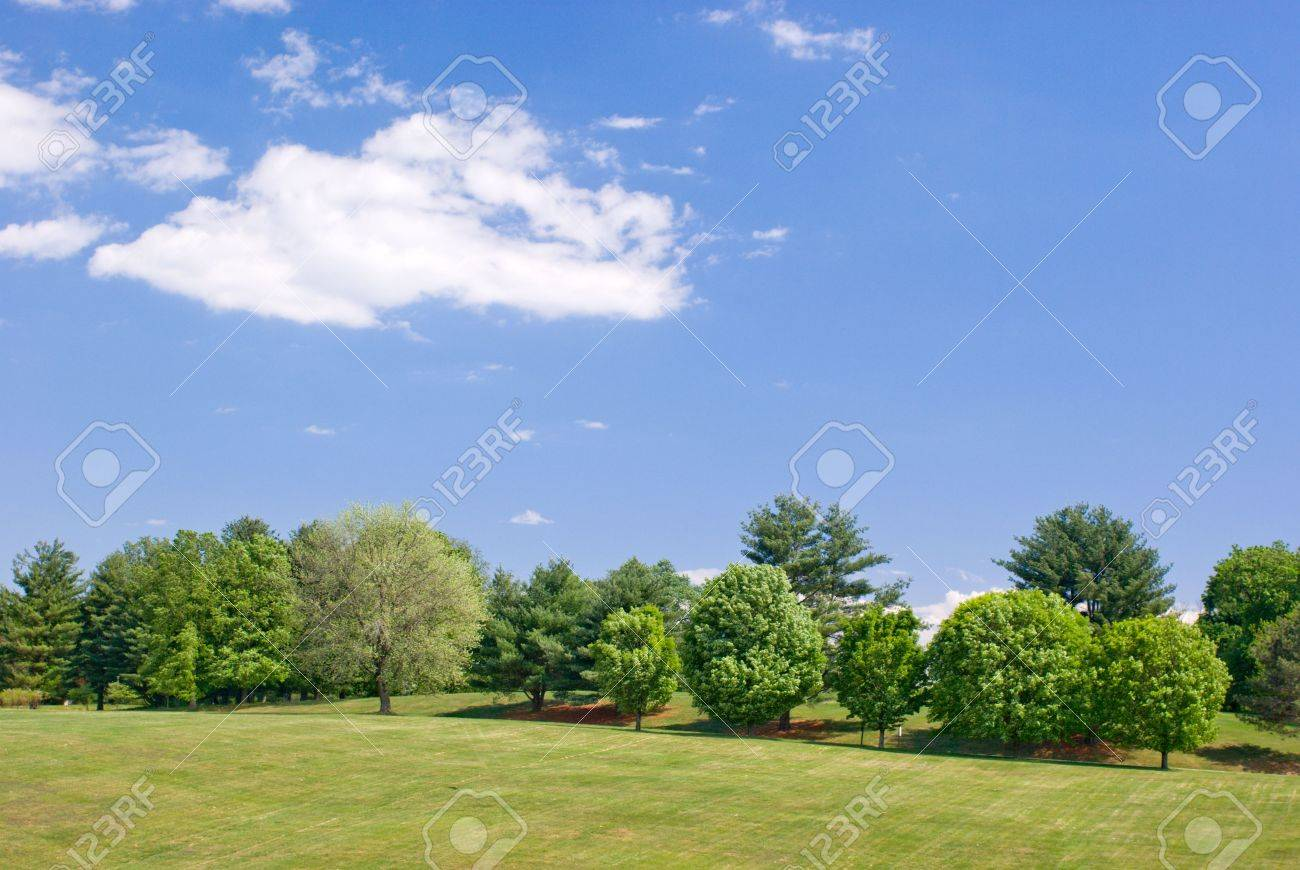 Grassy Hillside Landscape With Green Trees And Partly Cloudy Stock Photo Picture And Royalty Free Image Image 3574856