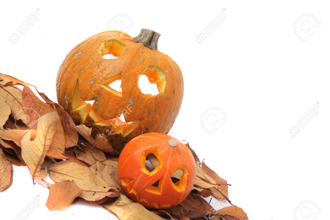 halloween pumpkins isolated on the white background Stock Photo - 10027289