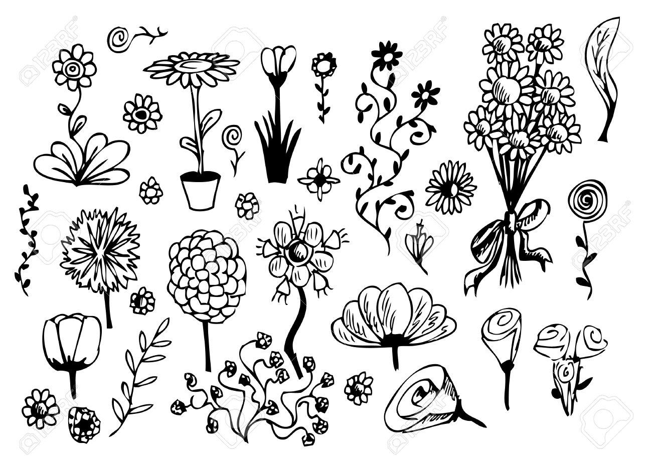 Banque d\u0027images , Fleurs dessinées isolées sur un fond blanc à main