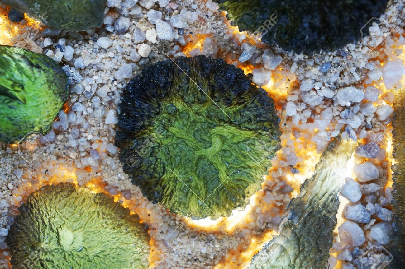moldavite minerals collection as nice natural background