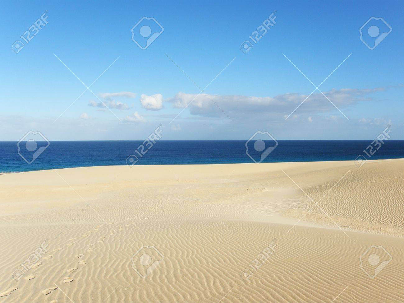 Desert and water Stock Photo - 10324177