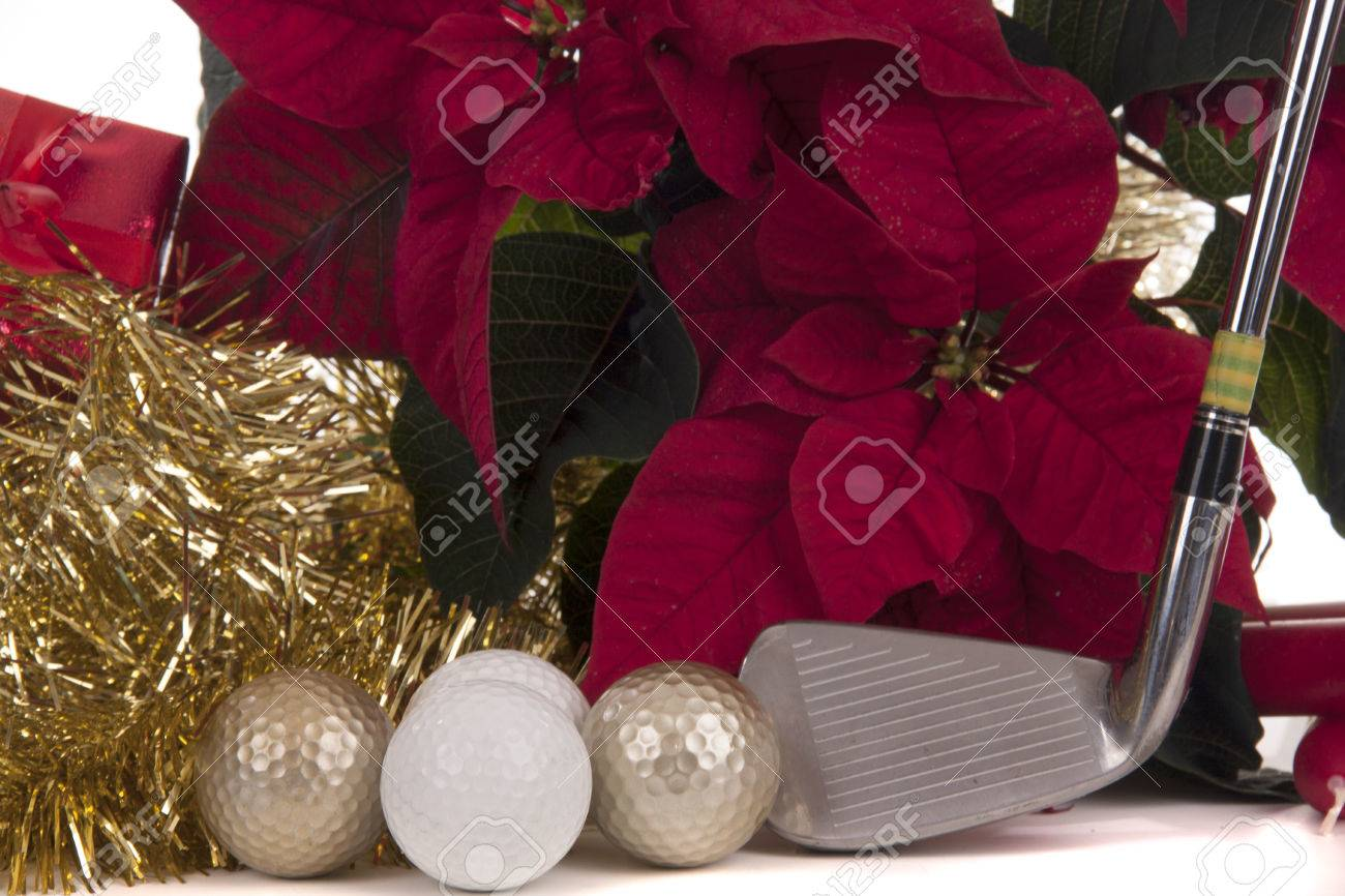 Stella Di Natale Pianta.Stella Di Natale E Una Pianta Di Titoli Con Natale
