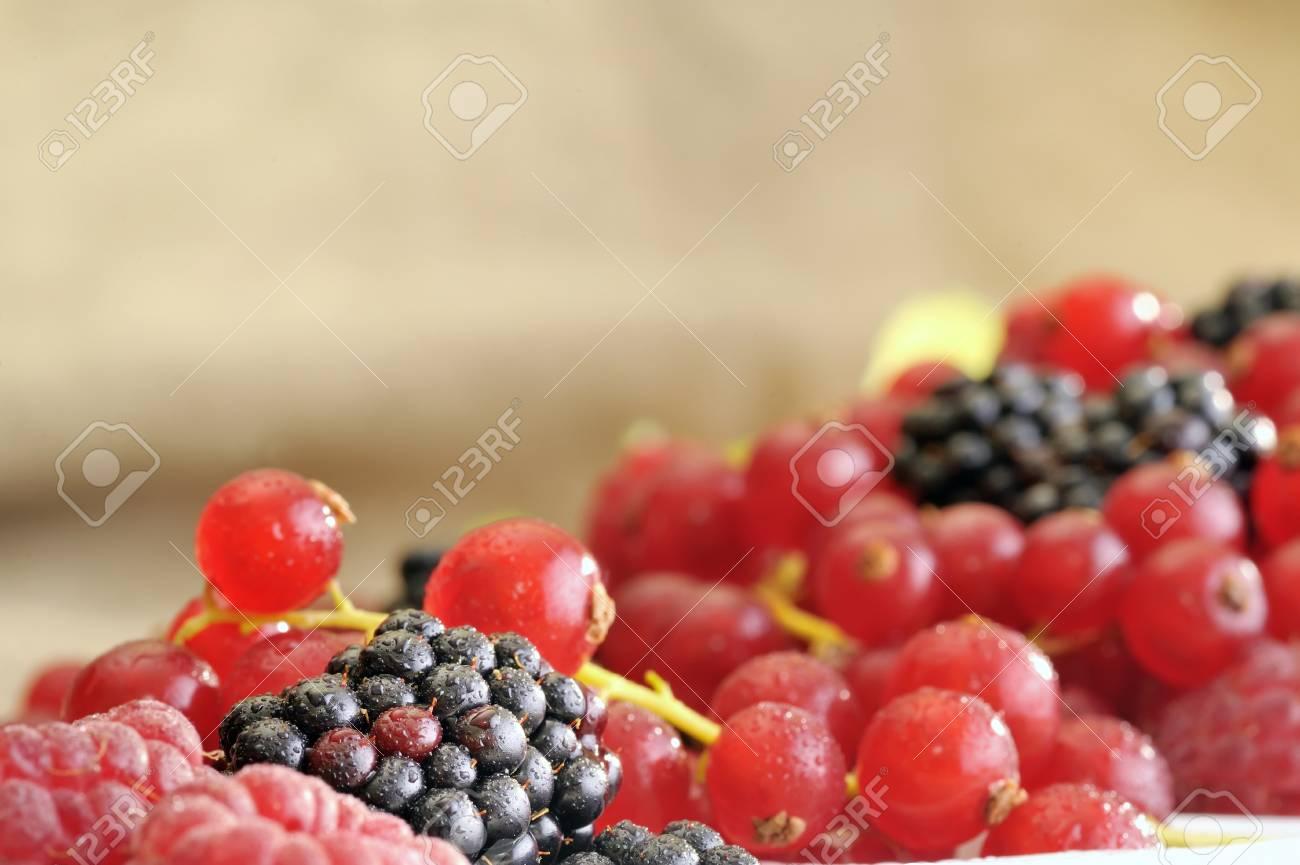 fresh berries Stock Photo - 16475375