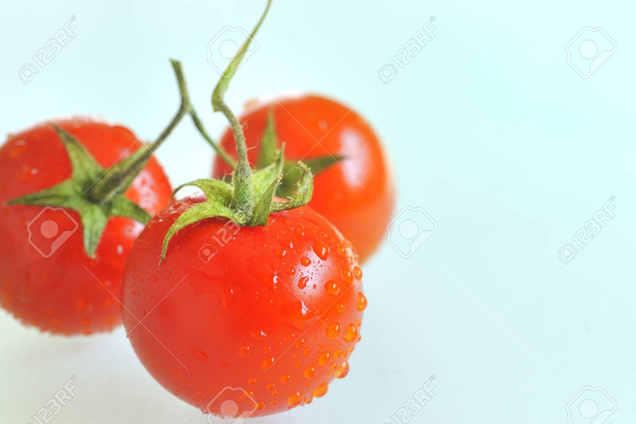 red tomato with water drops Stock Photo - 16480854