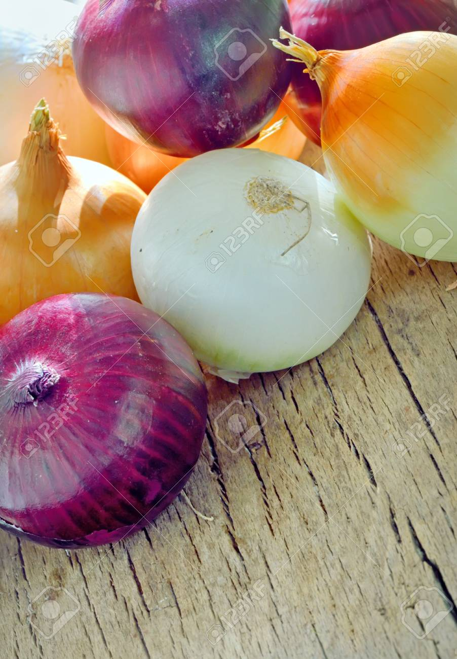 types of onion shoot in studio Stock Photo - 23000542