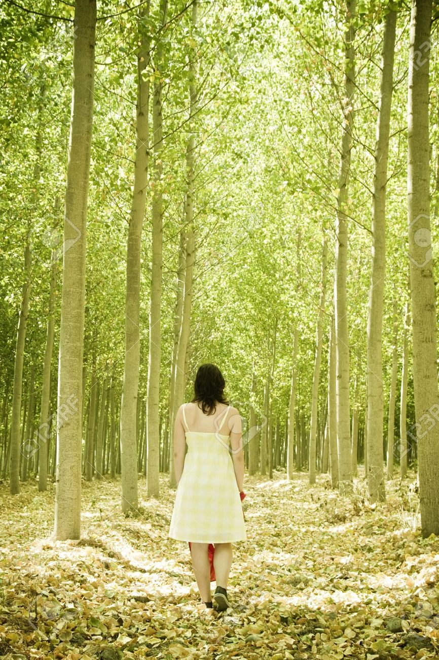 Young woman walking through the woods. Stock Photo - 4747589