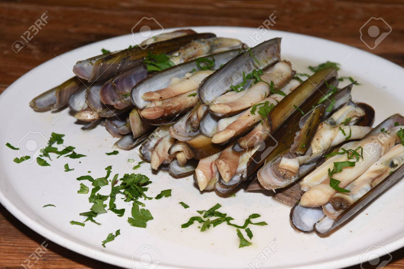 Razor Shell Stock Photo Picture And Royalty Free Image Image 59130002