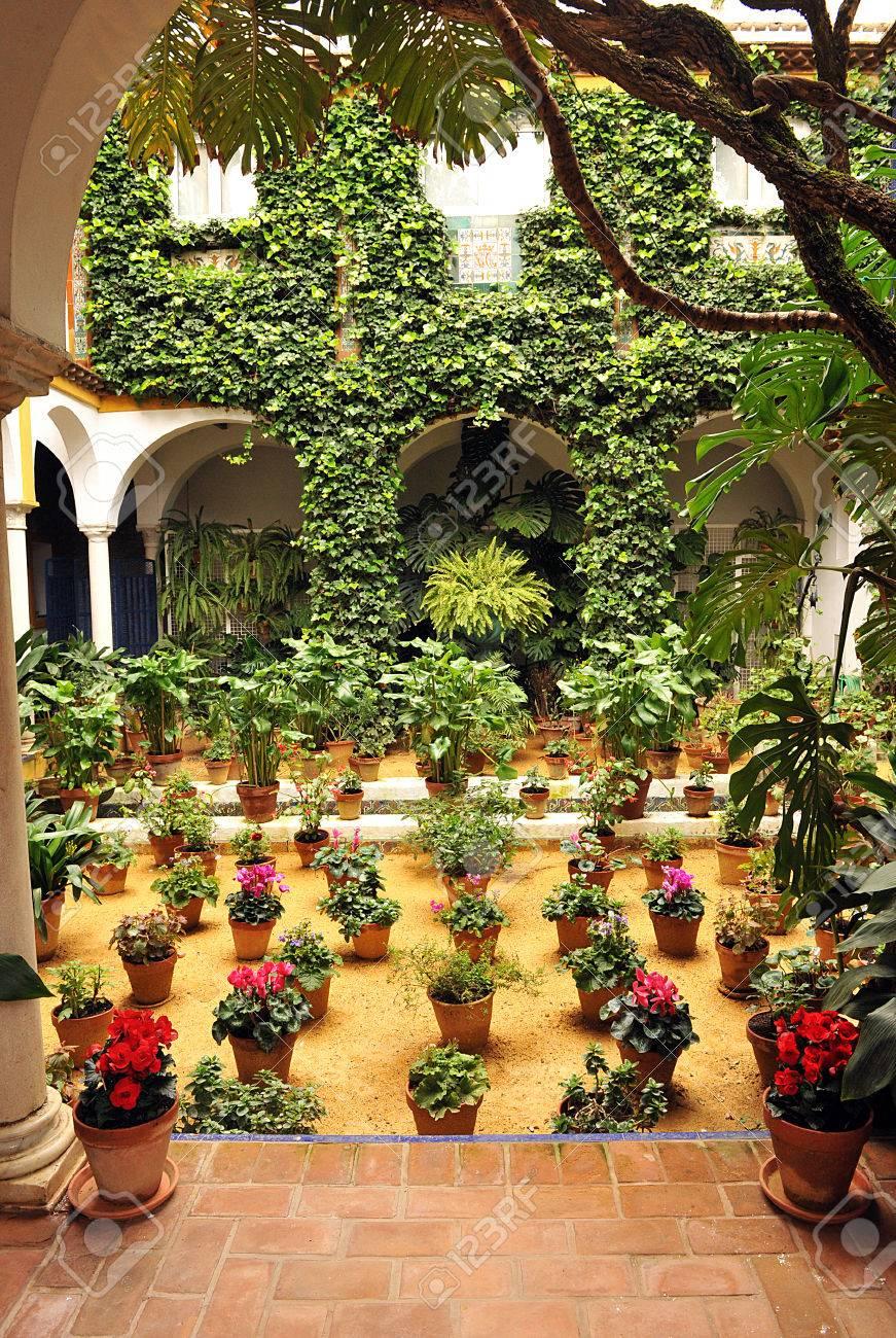 Patio Flowers, Barrio Santa Cruz, Seville, Spain Stock Photo   23947962