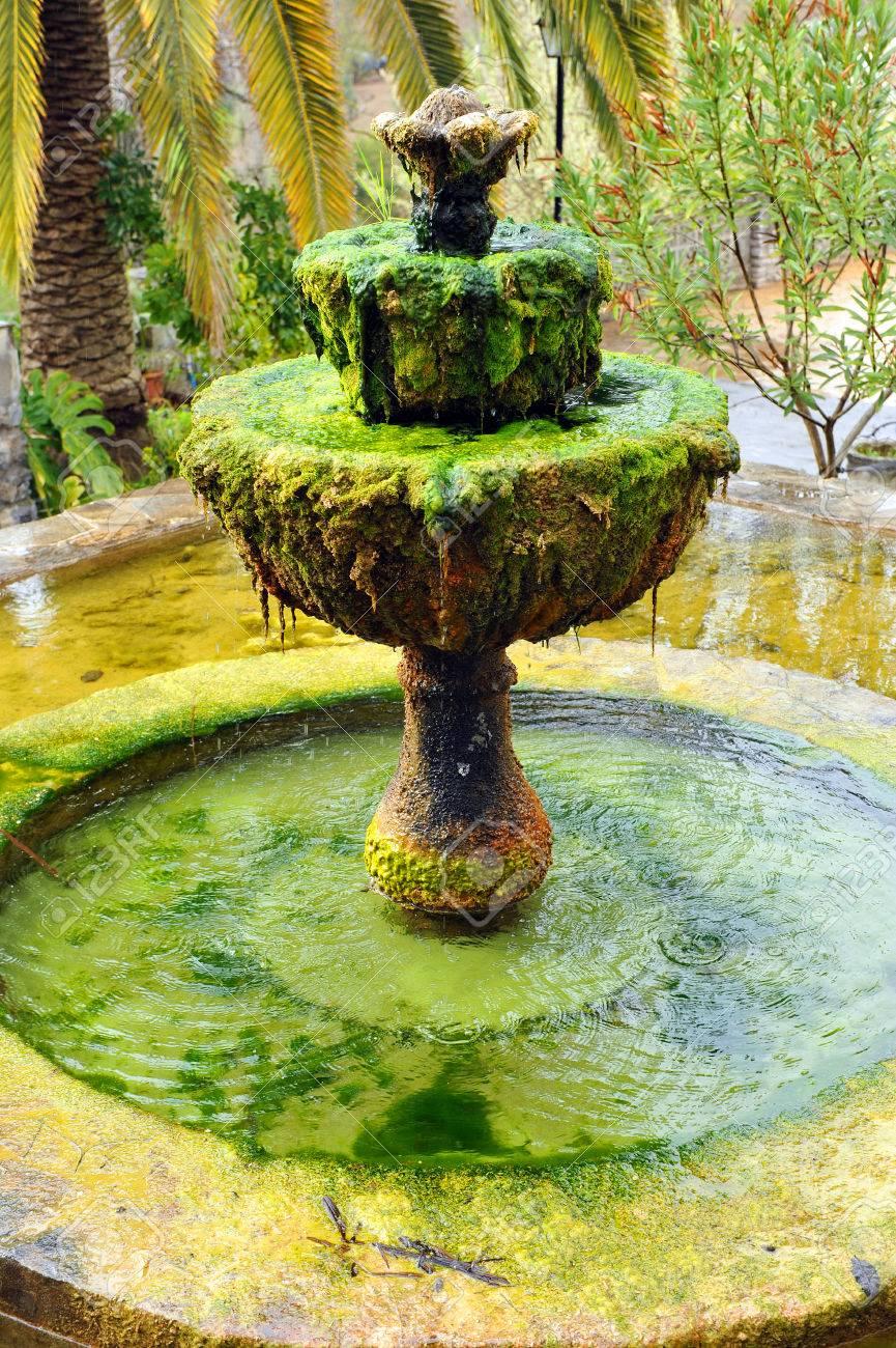 Giardino Di Una Casa fontana decorativa nel giardino di una casa di campagna