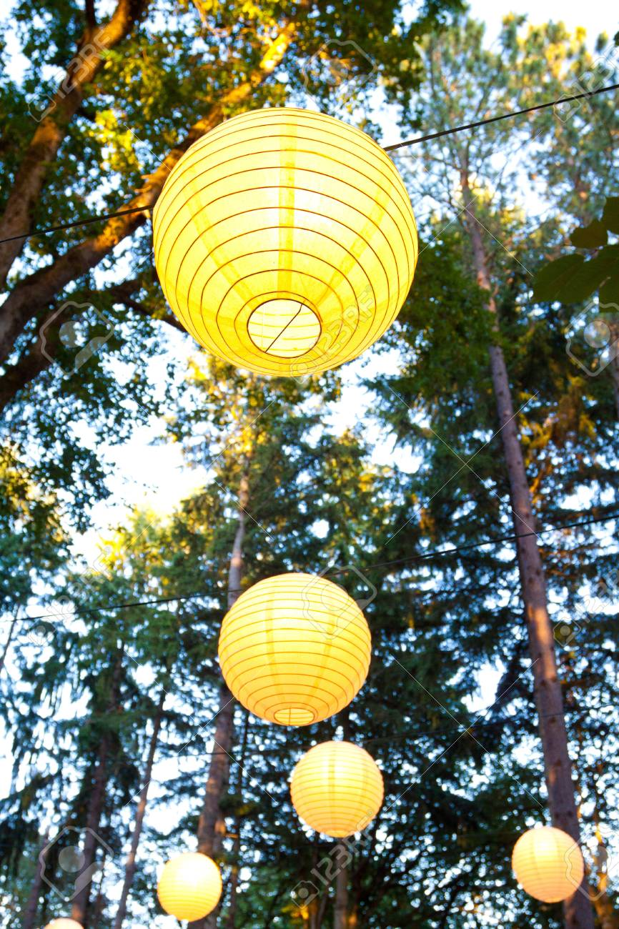 Yellow wedding decorations hang from the trees at a wedding ceremony stock photo yellow wedding decorations hang from the trees at a wedding ceremony and reception outdoors in oregon these yellow chinese lanterns or junglespirit Image collections