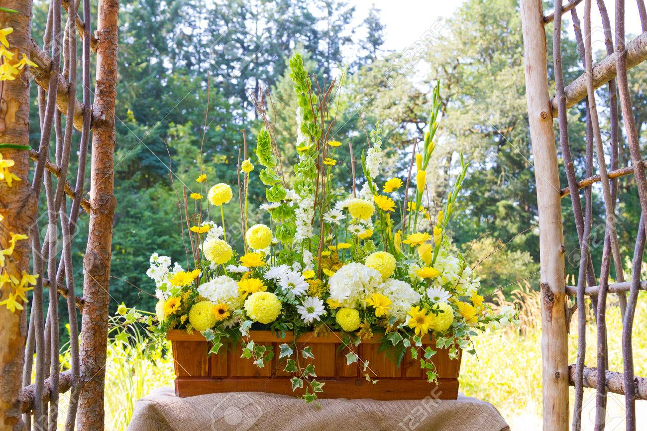 Flowers Of Yellow And White Together To Create A Beautiful Floral