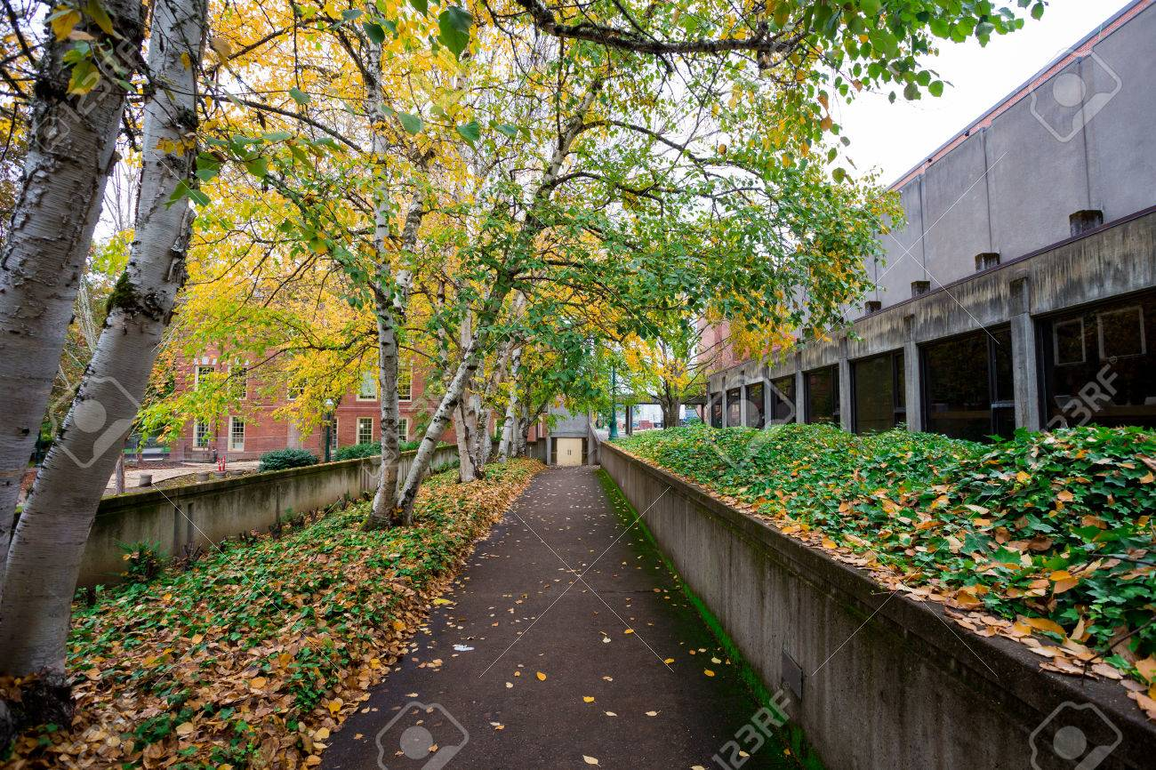 University Of Oregon With Fall Foilage As The Leaves On The Trees ...