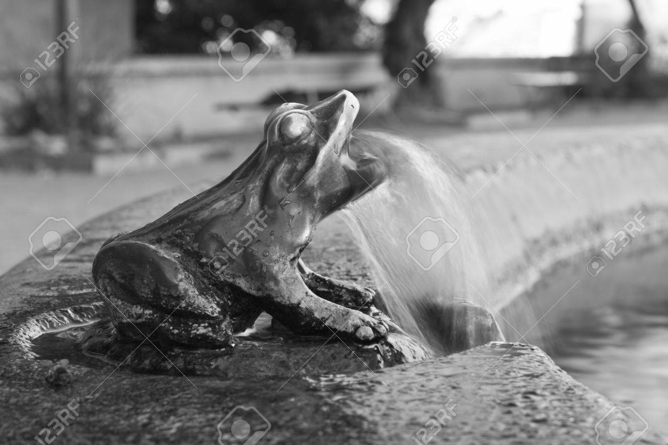 Frog Spitting Water on a Fountain, Saint-Florent, Corsica Stock Photo - 8666216
