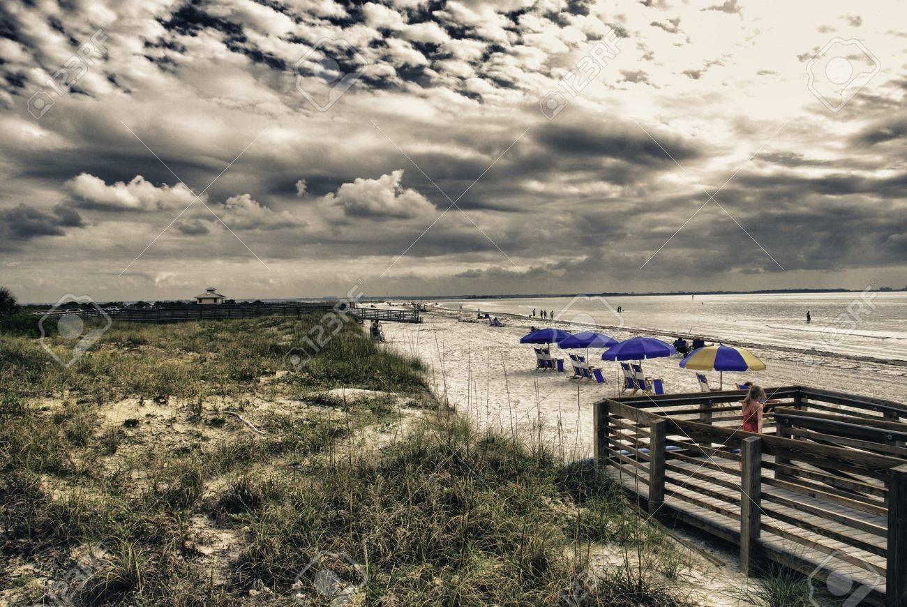 Colors of Honeymoon Island in Florida, U.S.A. Stock Photo - 12662823
