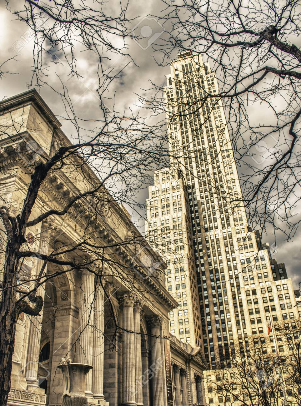 New York Public Library and Surrounding Skyscrapers, U S A  Stock Photo - 13047723