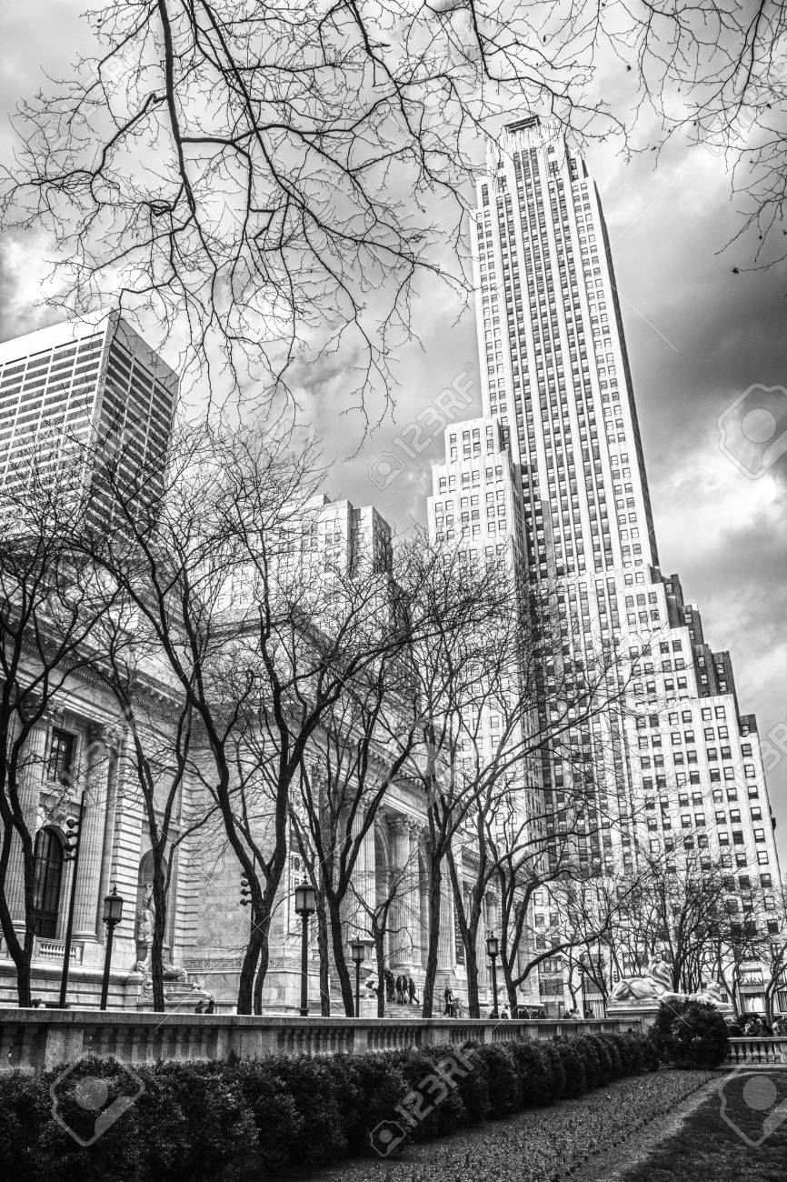New York Public Library and Surrounding Skyscrapers, U S A  Stock Photo - 13047726