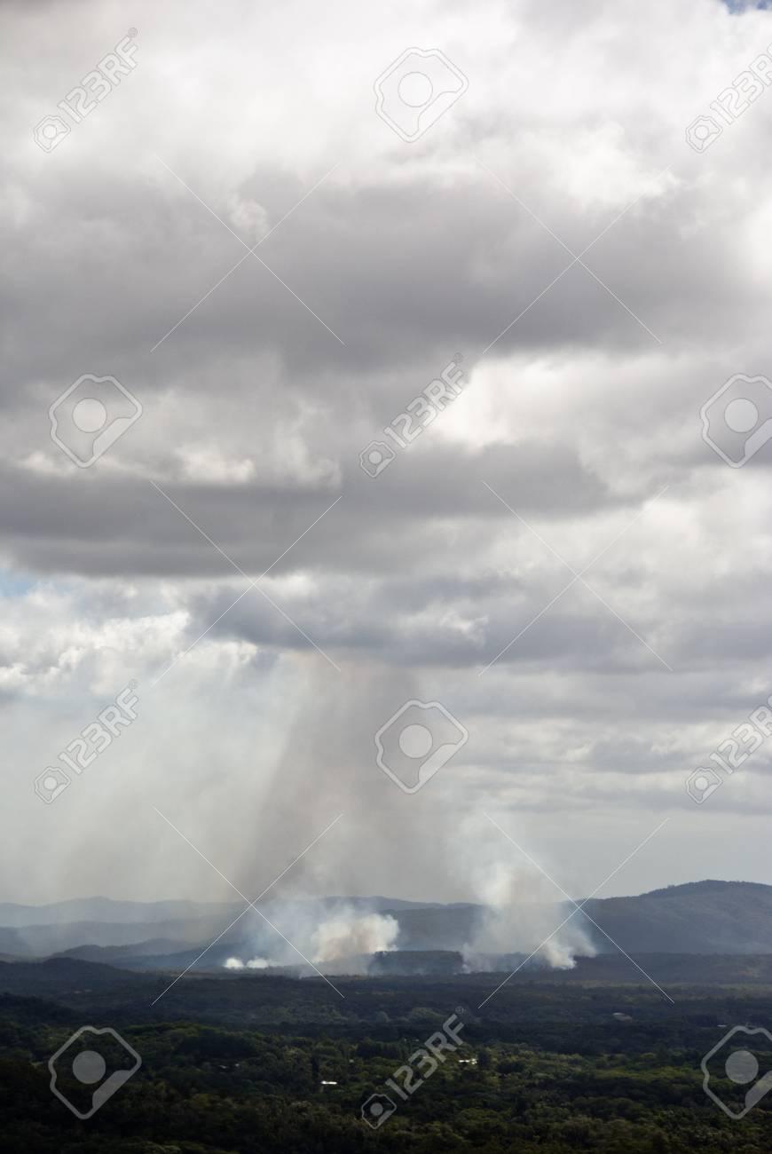Rai n Forest near Kuranda Village, Queensland, Australia Stock Photo - 16675156