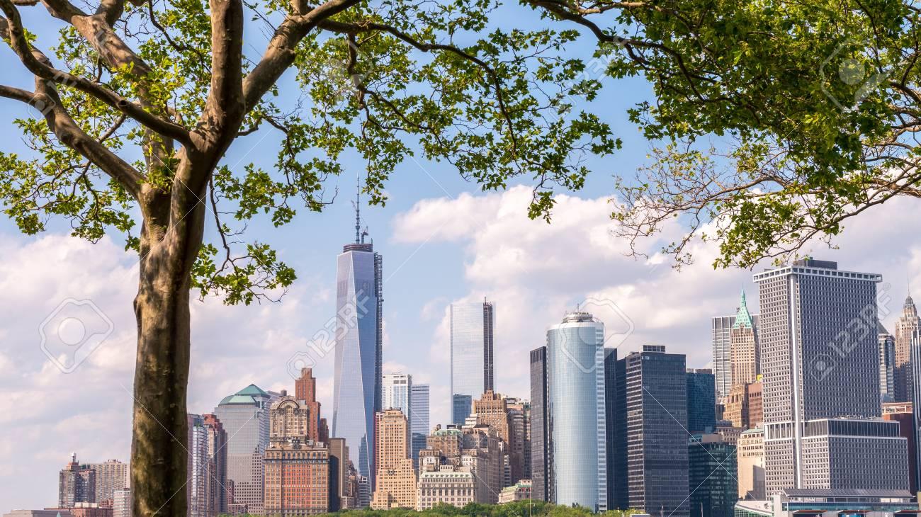 Horizonte Hermoso Del Bajo Manhattan Enmarcado Por árboles De ...