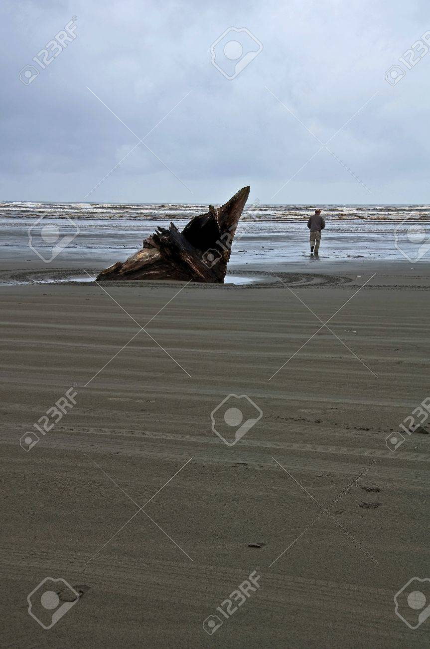 There is a storm rolling in on this beach scene with a man and large piece of drift wood located on Moclips in Gray Stock Photo - 10836176
