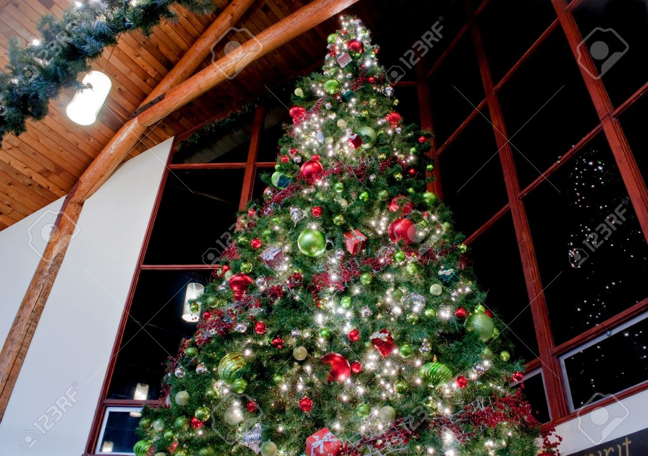 This Dramatic Image Is Of A Very Large Indoor Christmas Tree ...