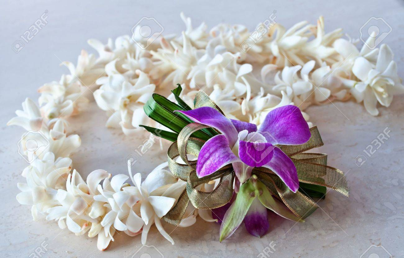 This tropical still life is a hawaii lei made of white tuberose stock photo this tropical still life is a hawaii lei made of white tuberose flowers a purple orchid and ribbon it is lying on a light surface izmirmasajfo Images