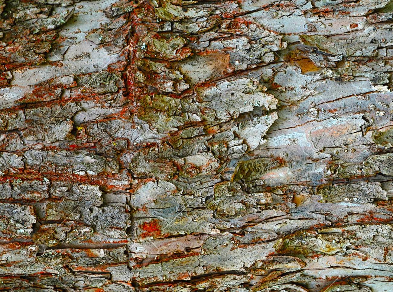 Abstract Background Or Texture Cartoon Draw Bark Stock Photo