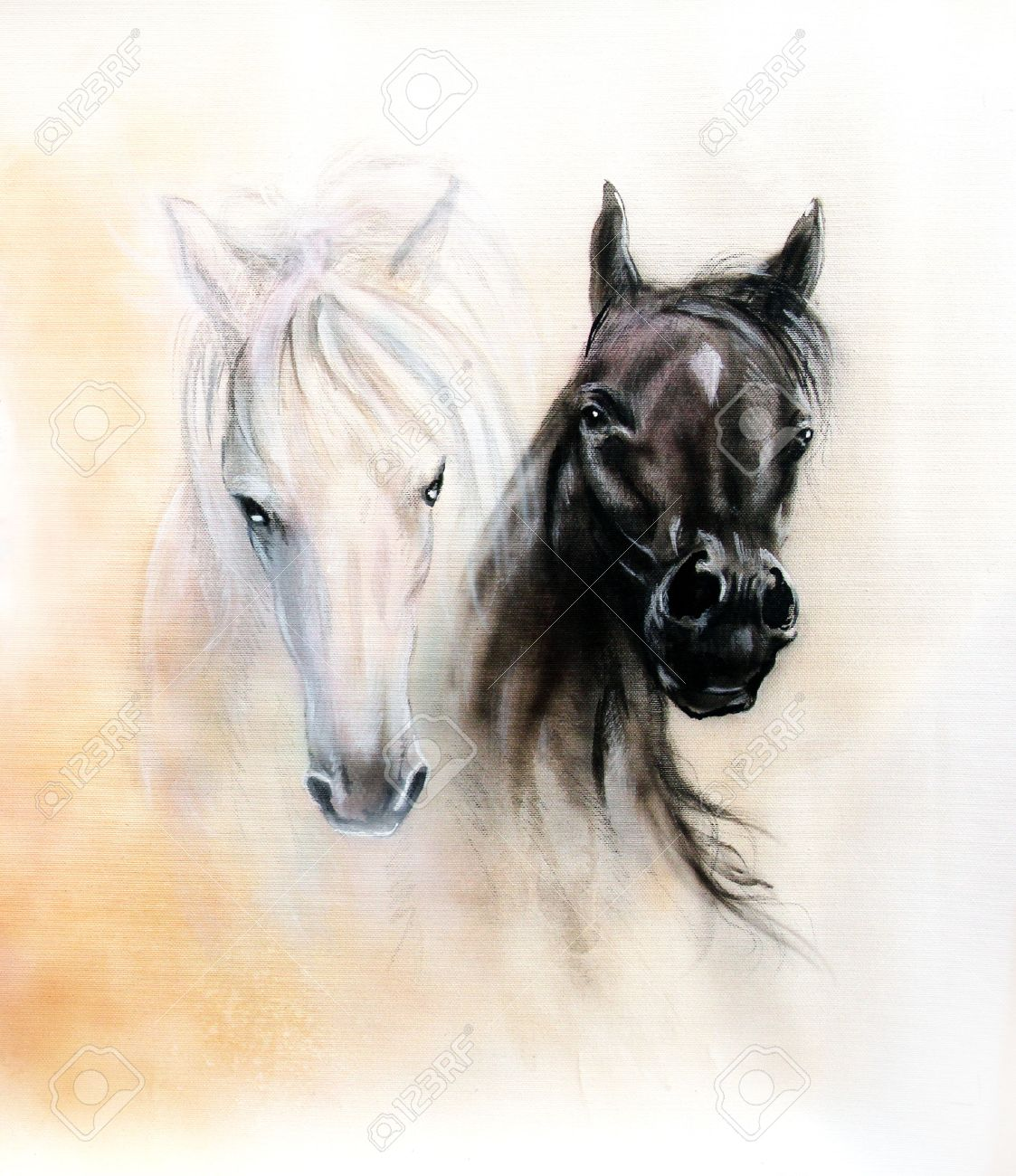 Horse Heads Two Black And White Horse Spirits Beautiful Detailed Stock Photo Picture And Royalty Free Image Image 38053289