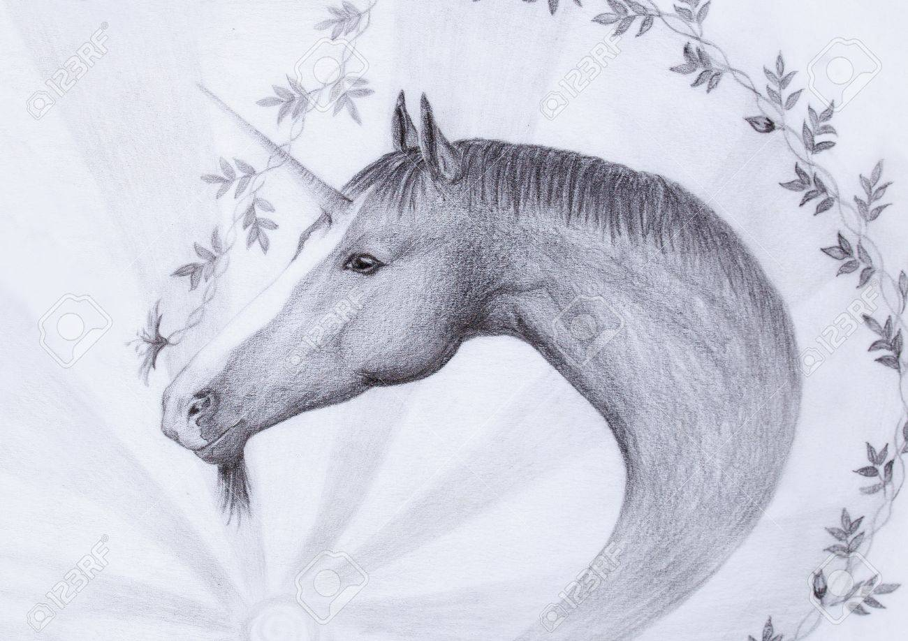 Draw Unicorn And Beautiful Flower Original Hand Draw Stock Photo