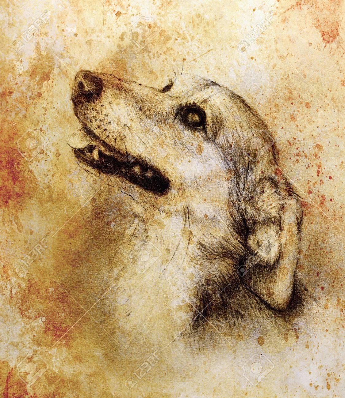 El Dibujo De Lápiz Del Perro En El Papel Viejo Papel De La Vendimia