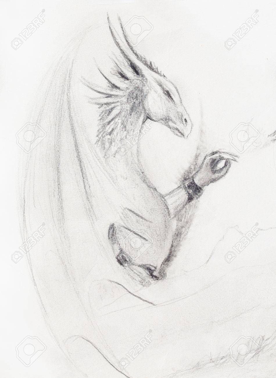 Pencil drawing dragon on old paper background stock photo 54742273