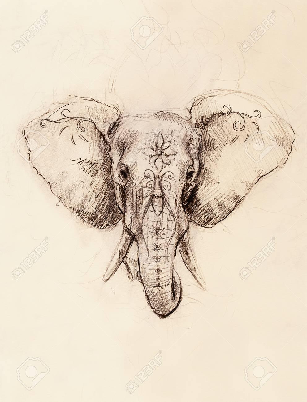 Elefante Con El Ornamento Floral Dibujo A Lápiz Sobre Papel Fotos