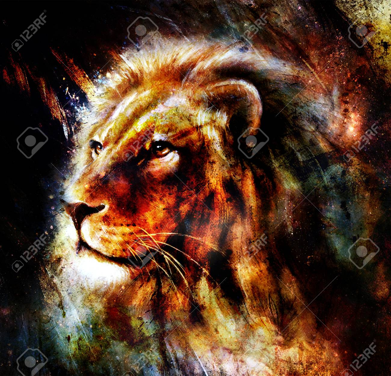 lion painting on abstract color background profile portrait stock
