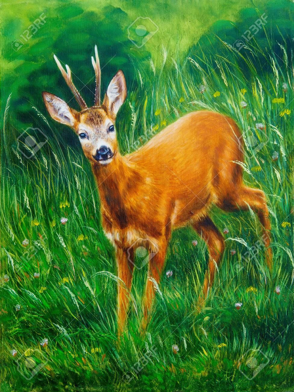 Peinture De Jeunes Cerfs Dans Le Paysage Sauvage Avec Lherbe Haute