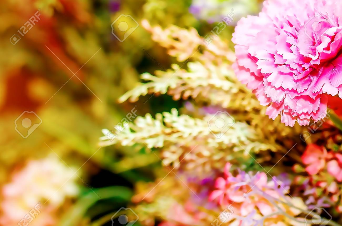 Decorative Floral Bouquet With Carnation Flower And Bookeh